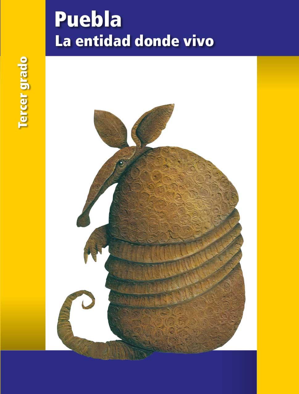 La Entidad Donde Vivo Puebla Libro De Primaria Grado 3 Comision Nacional De Libros De Texto Gratuitos